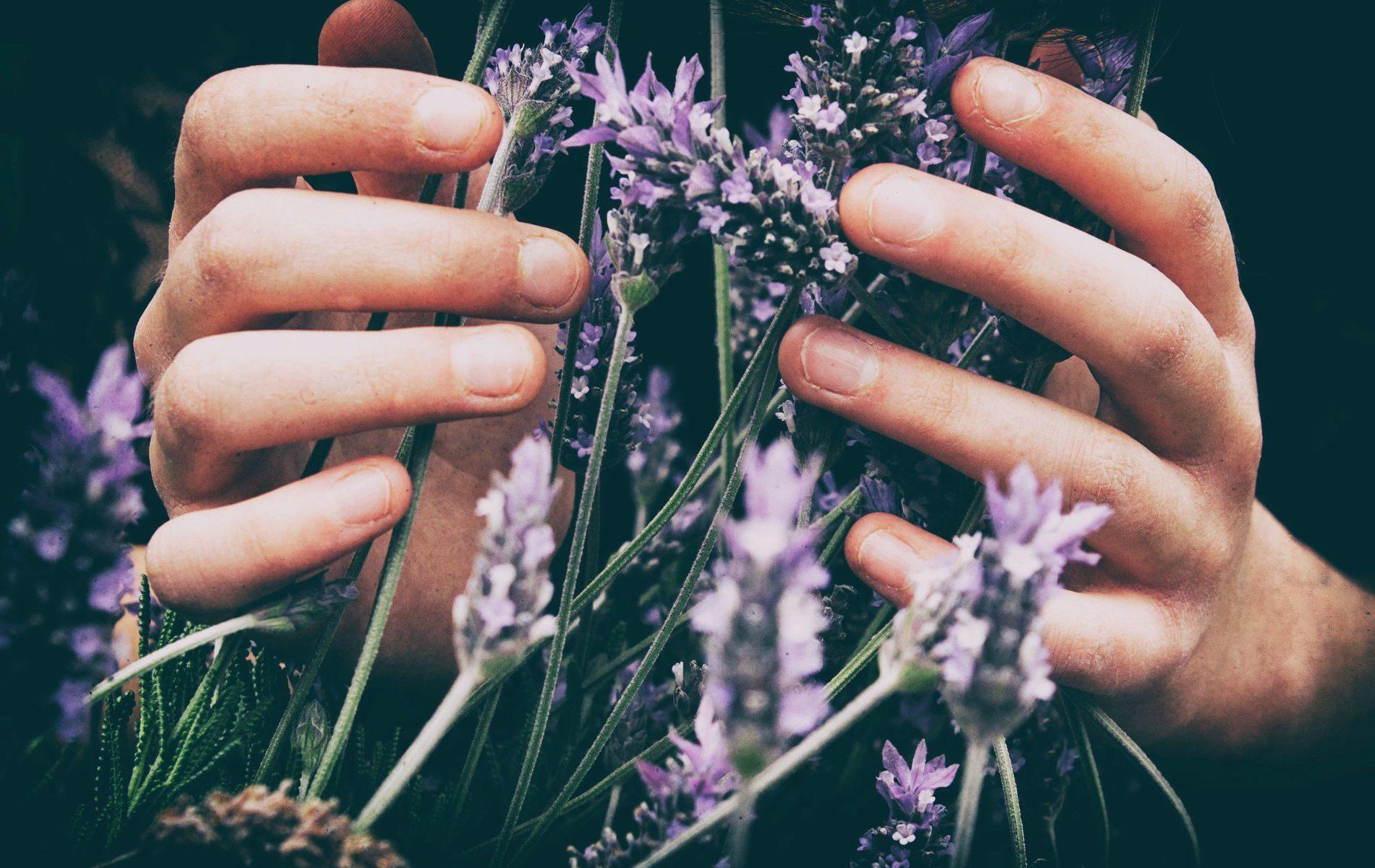 Massage capillaire à Aix en Provence